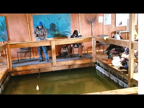 Winter Crappie Fishing  - Fishing on a Heated Dock. EP 38
