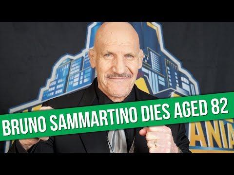 WWE Legend Bruno Sammartino Dies Aged 82