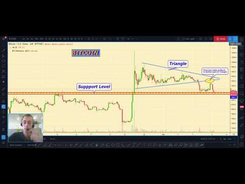 BITCOIN price analytics, BITCOIN prediction, Cryptocurrency Market overview for 11.11.2019
