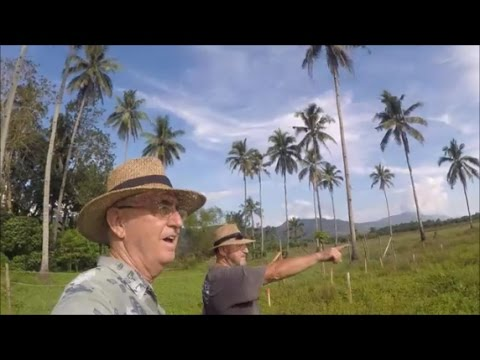 Bud Brown - My brother's Mindanao Farm tour.