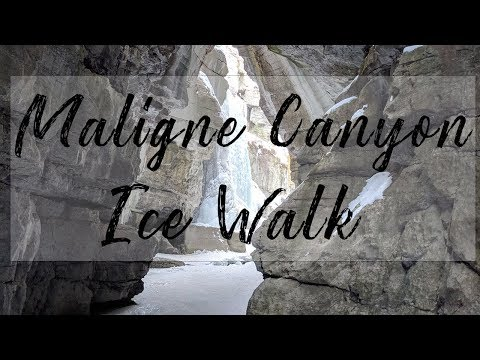 Maligne Canyon Ice Walk Family Friendly Winter Jasper Adventure  - Northern Adventure Squad