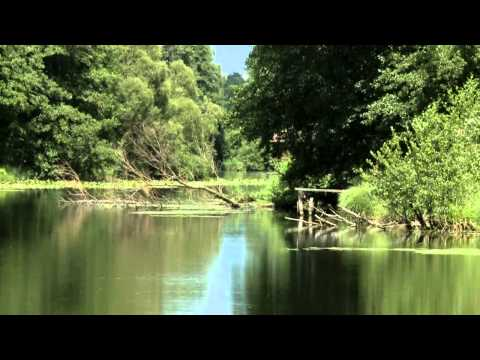 The MURA River The Cradle of Life documentary HD (2011)