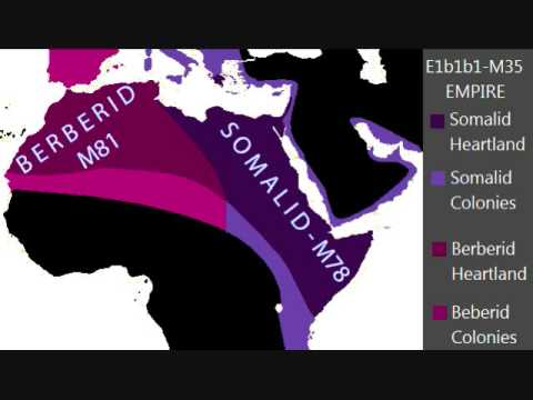 E1b1b (M215) the genetic marker of the Sea People (The Meditid Race)