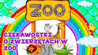 Zwierzęta ZOO  dla dzieci. Dzikie zwierzęta ciekawostki bajka dla dzieci.