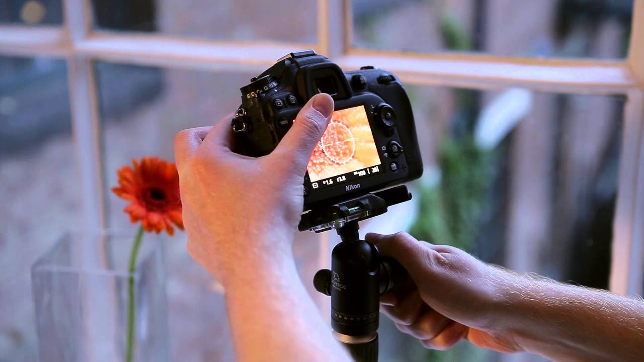 What is the best option for taking a macro photography