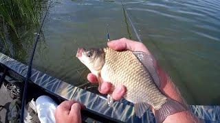Ловля карася на поплавочную удочку Full HD(Это видео о ловле карася поплавочной удочкой на реке Днепр, прикормка: (вареный горох, перловка, манка, макух..., 2014-08-25T13:03:33.000Z)