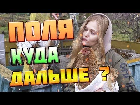 ПОЛЯ ИЗ ДЕРЕВКИ - МОЙ СЕРИАЛ - НАЧАЛО ЗИМЫ - PolyaIzDerevki