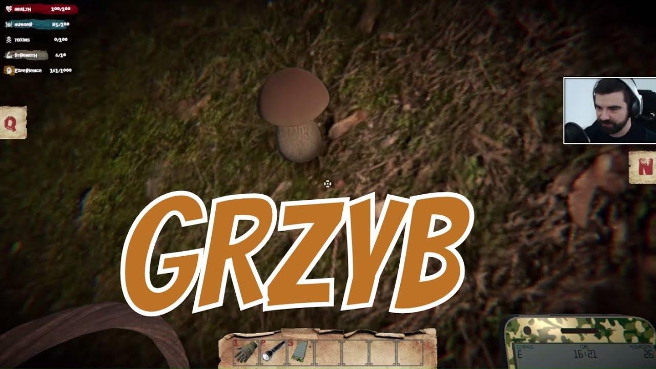 Mushrooms: Forest Walker – Symulator grzybiarza