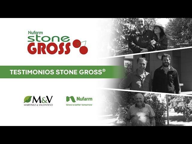 Testimonios de uso de Stone Gross®