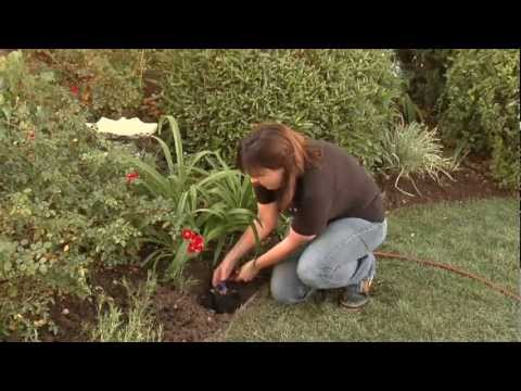 How To Install A Diy Drip Irrigation System Your Sprinkler