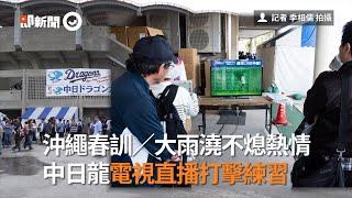 沖繩春訓/大雨澆不熄熱情 中日龍電視直播打擊練習