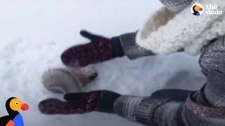 Kids Rescue Frozen Squirrel | The Dodo thumbnail