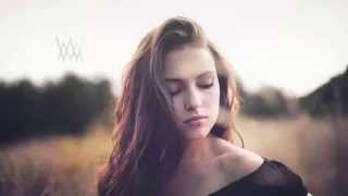 The Best Melodic Dubstep Mix 2014 June (20 min)