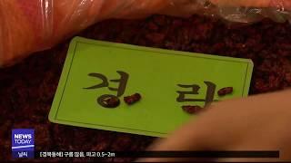 [대구MBC뉴스] 한약재 도매시장 무관심속 방치