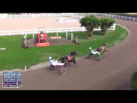 Bermuda Harness Pony Racing, February 2020