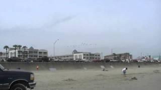 Парящие пеликаны Галвестона!