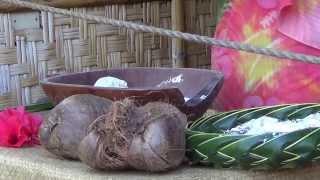 #86 США Гавайи Полинезийский культурный центр Острова Фиджи Таити Гавайи (Часть 1)(Сегодня мы приехали в Полинезийский культурный центр, который расположен в часе езды от Гонолулу. Пообедал..., 2014-01-05T00:06:04.000Z)
