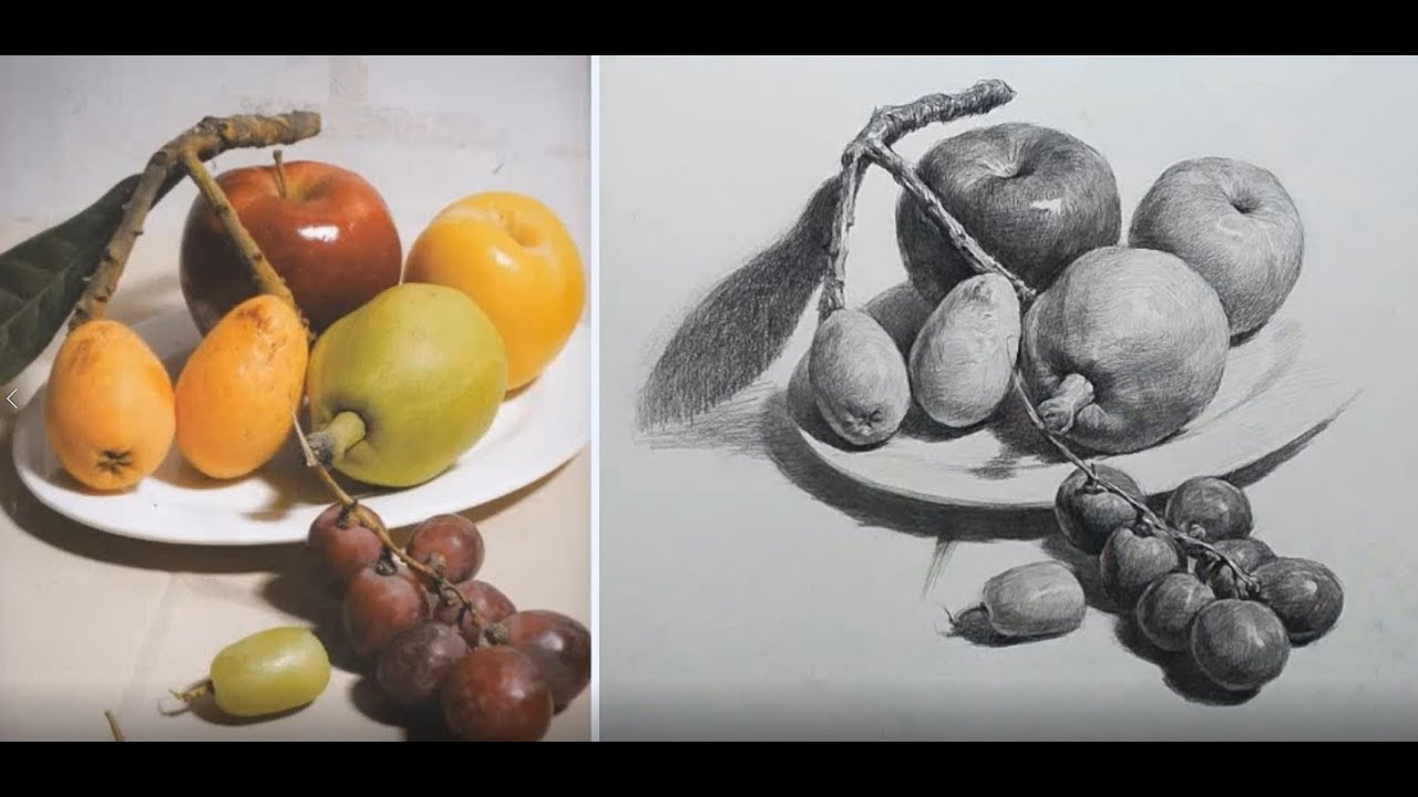 Still Life with fruit Drawing in Pencil - YouTube