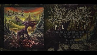 EMULSIFIED - FLESH [OFFICIAL EP STREAM] (2017) SW EXCLUSIVE