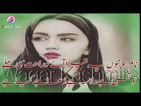 Two Lines  Sad Poetry Heart Touchung Poetry 2019 Part-230 Urdu/hindi Poetry By Hafiz Tariq Ali 