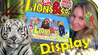 LIONS & CO 🦁 Ein ganzes Display Maxxi Edition 🐆 Figuren Unboxing 🐒 DeAgostini
