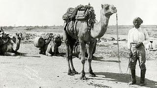 History of the Muslim Cameleers of Australia