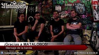 Entrevista con MATALOBOS [León, México @ 2018.06.16]