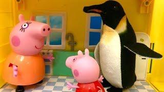 Świnka Peppa i Pingwinek ☺ Bajka po Polsku dla Dzieci