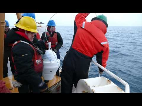 Deploying Drift Buoys, Chukchi Sea 8-18-15