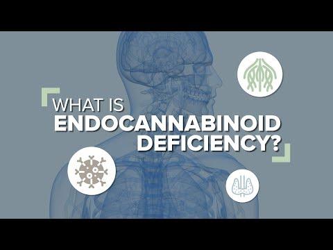 What Is Endocannabinoid Deficiency?