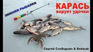 Зимняя рыбалка. Карась ворует удочки
