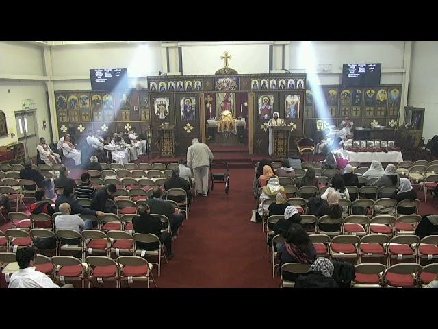 Sermon - November 25, 2018