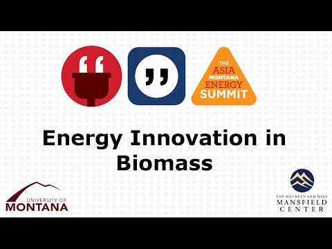 Energy Innovation in Biomass