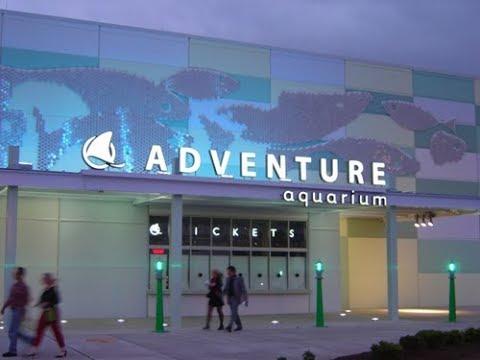 Adventure Aquarium | Camden, NJ