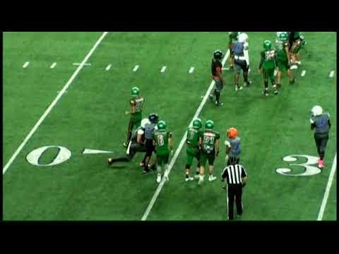 NTX Hornets V.S Mexico City Jaguars 14u AT&T stadium 2017