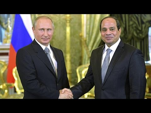Russia to increase wheat supplies to Egypt, says Putin