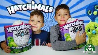 Hatchimals Μαγικά Πλασματάκια σε Αυγά Έκπληξη παιχνίδια για παιδιά Giochi Preziosi Διασκέδαση !