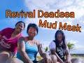 Revival Dead sea Mud Clay/MAsk
