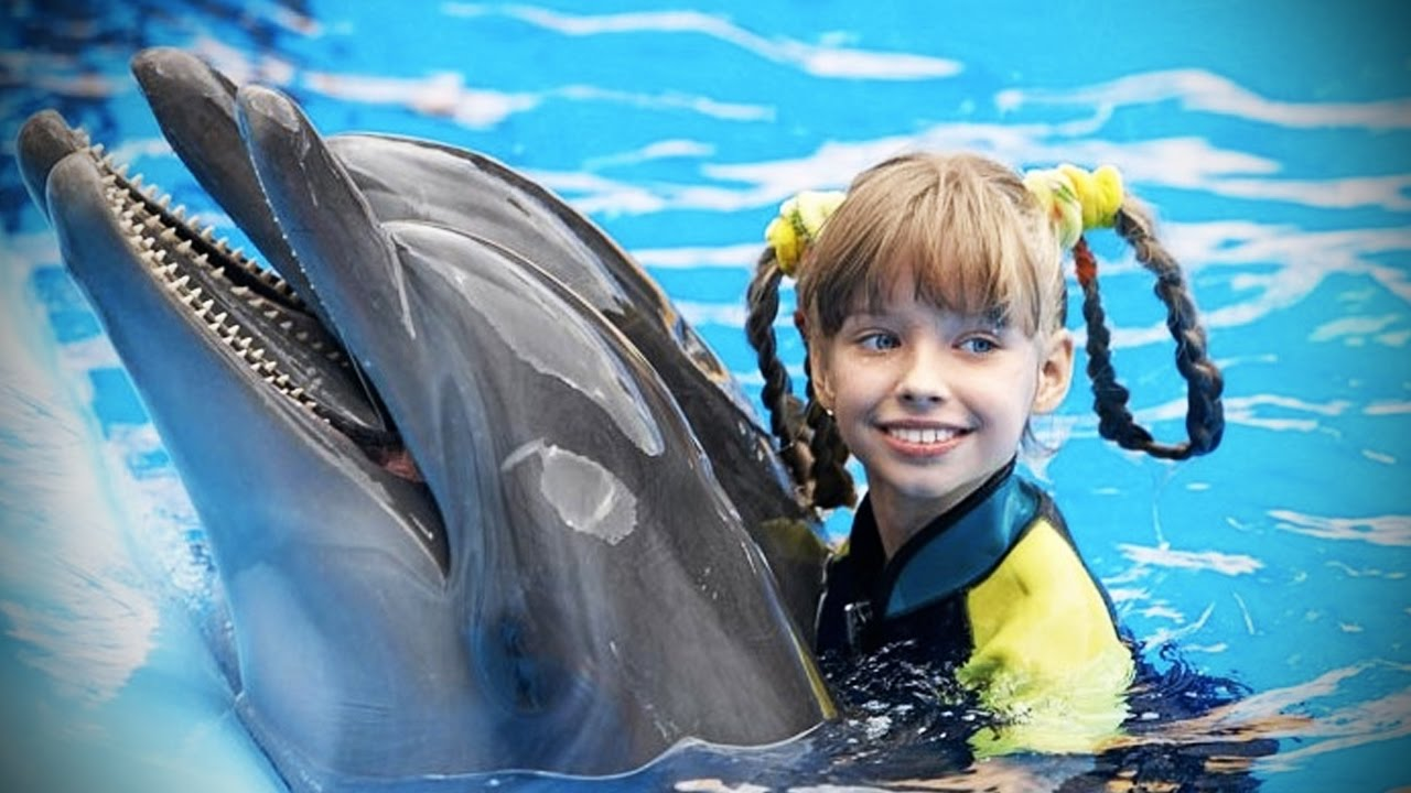 Dolphins ???? Smart, Beautiful, Funny Dolphins! [Funny Pets]