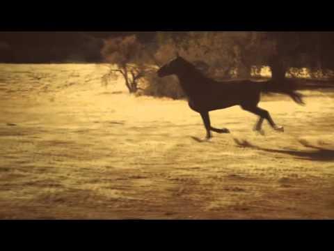Hasta abajo remix - yandel dj double