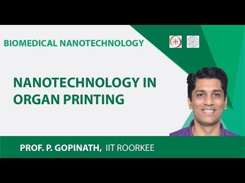 Nanotechnology In Organ Printing