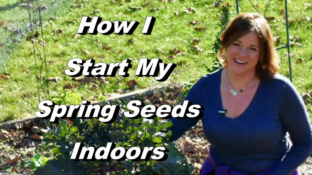 Start Garden Seeds Indoors How i start my spring garden seeds indoors broccoli cabbage and how i start my spring garden seeds indoors broccoli cabbage and much more zone 6b workwithnaturefo