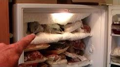 Freezer Frost Repair