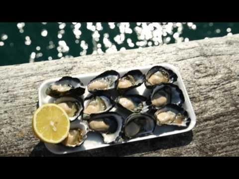 Getaway to the Oyster Coast - Merimbula and Sapphire Coast