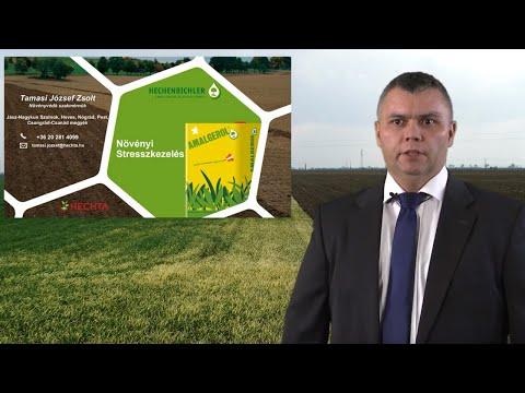 Növényi stressz kezelése növényvédő szer elsodródás esetén