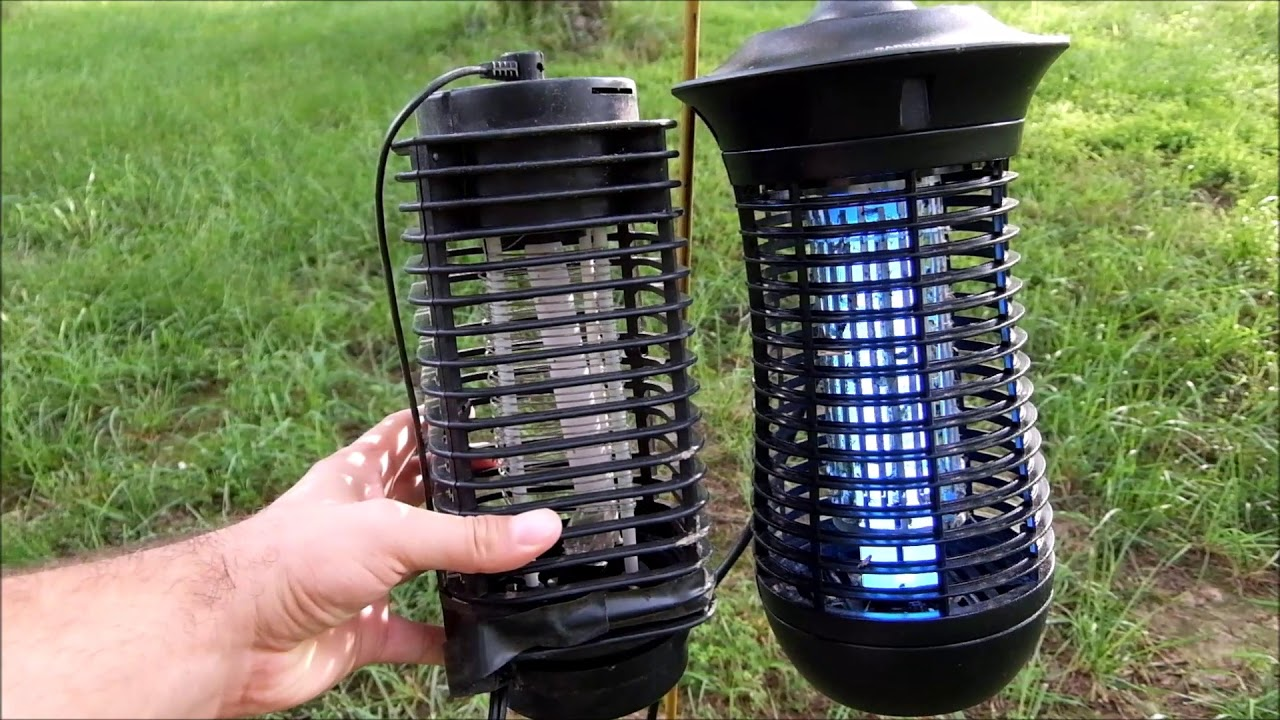 Aldi Bug Zapper and feed your chickens!