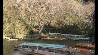 日本一周女ひとり旅275日目。岩手県げいび渓で桜と舟下りLive