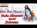 Sivaratri Special Songs Hara Hara Mahadeva S.P.Balasubramanyam