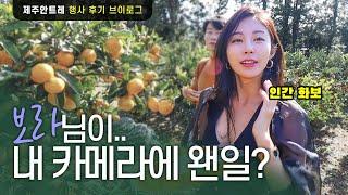 경식보라 커플과 다녀온 제주여행 (feat. 여행에미치…