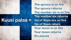 Finnish language meme explained: Kuusi Palaa